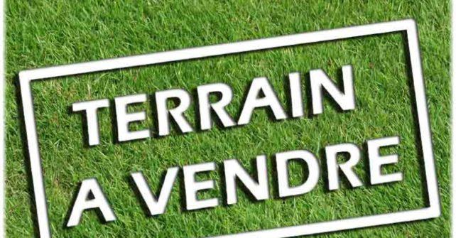 Plan des trois terrains à vendre au Mont Édouard